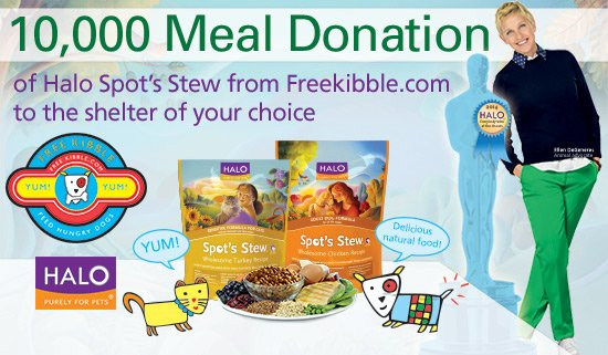 10000-meals-at-animal-shelters-donated-by-halo-purely-for-pets-in-your-name-6300
